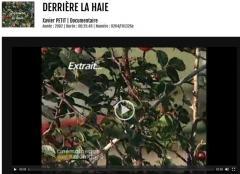 bf_imageDerriere_la_haie_Xavier_Petit.jpg