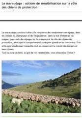 bf_imageMaraudage_maison_du_berger.jpg