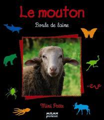 bf_imagele-mouton-boule-de-laine.jpg