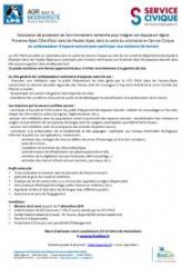 bf_imagelpo_service_civique.jpg